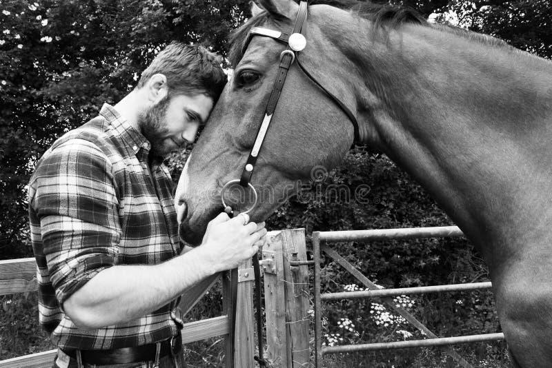 Przystojny Amerykański kowboj, jeździec z koszula i cajgami sprawdzać, chequered, migdali jego konia i kocha obraz stock