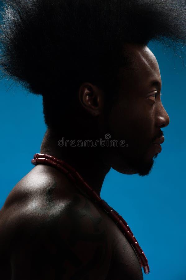 Przystojny amerykanina afrykańskiego pochodzenia mężczyzna obrazy stock