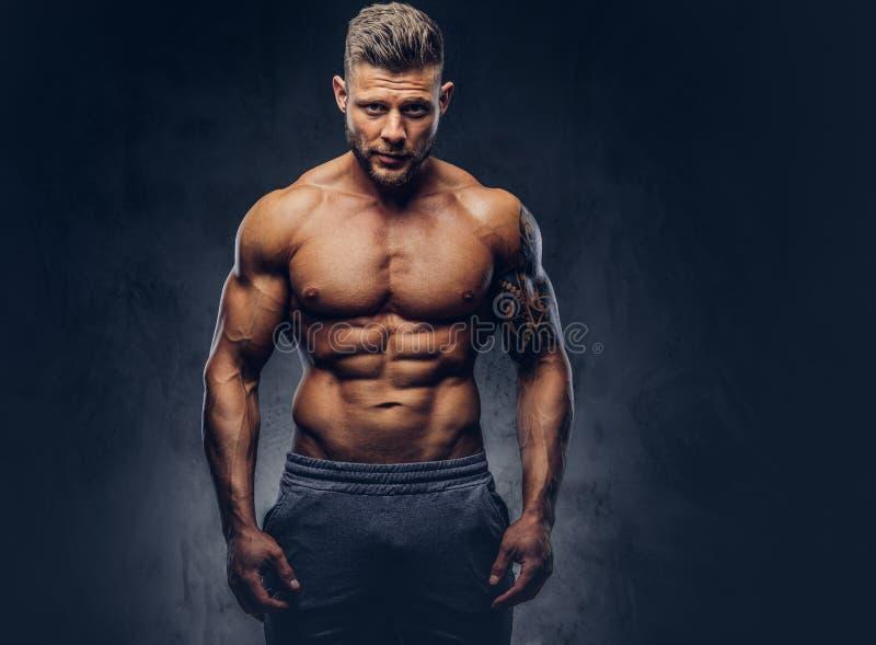 Przystojny bez koszuli tatuujący bodybuilder z eleganckim ostrzyżeniem i broda, będący ubranym bawimy się skróty, pozuje w studiu obraz stock