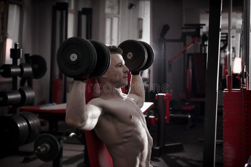 Przystojny bodybuilder z mięśniowym półpostać treningiem z dumbbells na sportowej ławce w gym Perfect mięśniowy męski ciało obraz stock