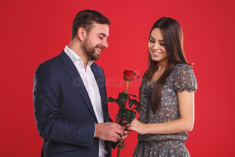 Przystojny elegancki facet daje róży jego pięknych nieśmiałych ono uśmiecha się i dziewczyny zdjęcie royalty free