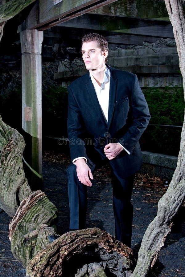przystojny mężczyzna drzewo fotografia royalty free