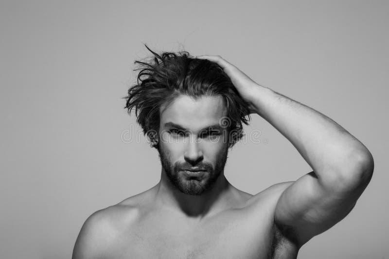 Przystojny mężczyzna z brodą, eleganckim włosy, ranek i moda, obraz stock