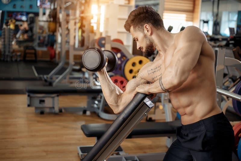 Przystojny, muskularny młodzieniec, budowniczy kajuty, ćwiczy bicepsy z gumowym dzwonkiem na ławce fotografia royalty free