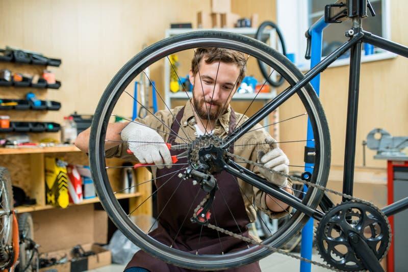 Przystosowywać bicyklu łańcuch zdjęcie royalty free