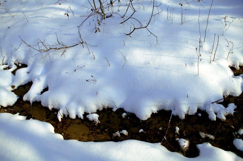 przyszła wiosna Roztapiający śnieg w lesie zdjęcia stock