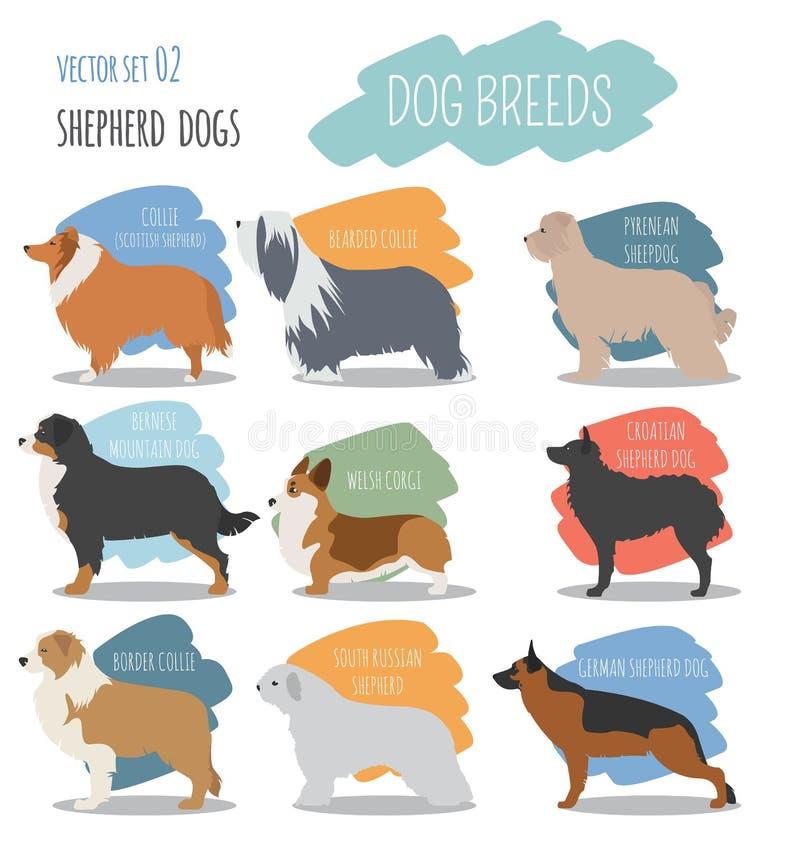 Psów trakeny Pasterskiego psa ustalona ikona Mieszkanie styl ilustracji