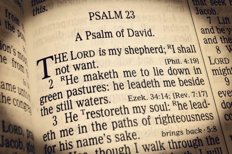 Psalm 23 - Lord Is My Shepherd royalty-vrije stock afbeelding
