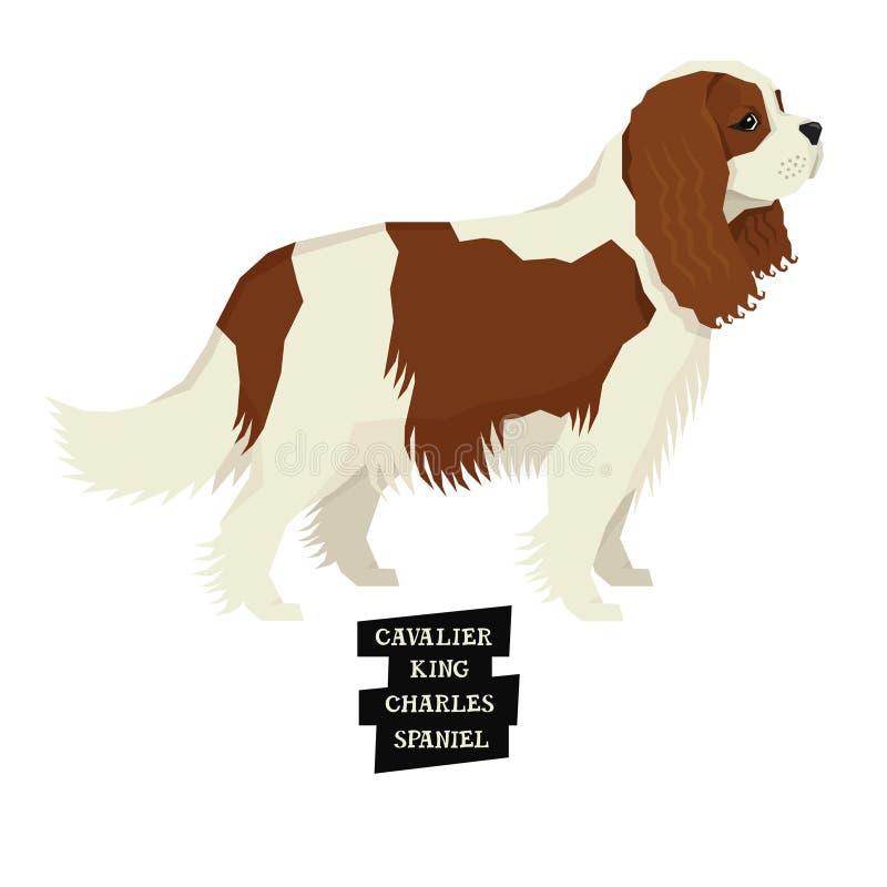 Psi inkasowy Nonszalancki królewiątka Charles spaniela Geometryczny styl ilustracji