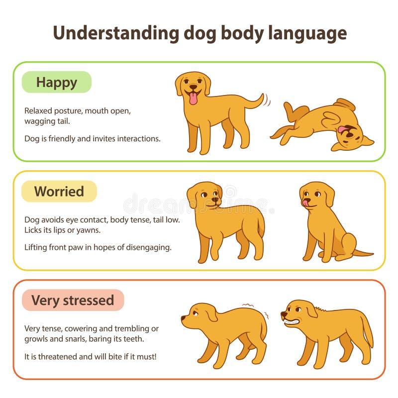 Psi język ciała royalty ilustracja