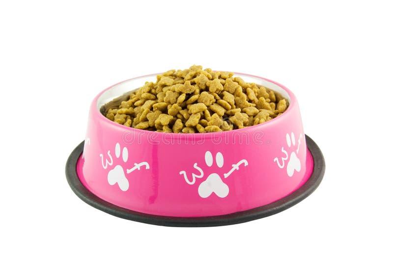 psi jedzenie obraz stock