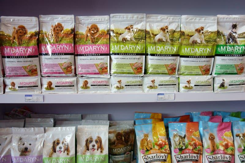 Psi jedzenie fotografia royalty free