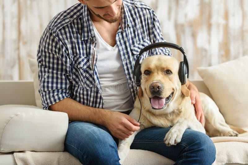 Psi jest ubranym hełmofony podczas gdy jego właściciel siedzi w pobliżu zdjęcia stock