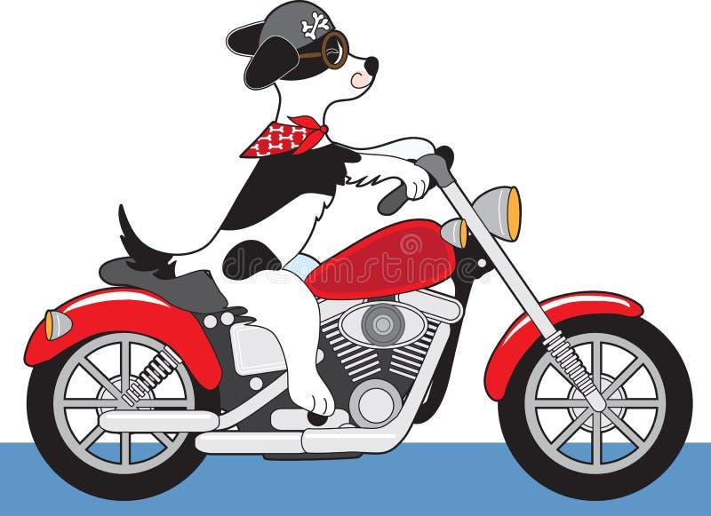 Psi Motocykl ilustracji