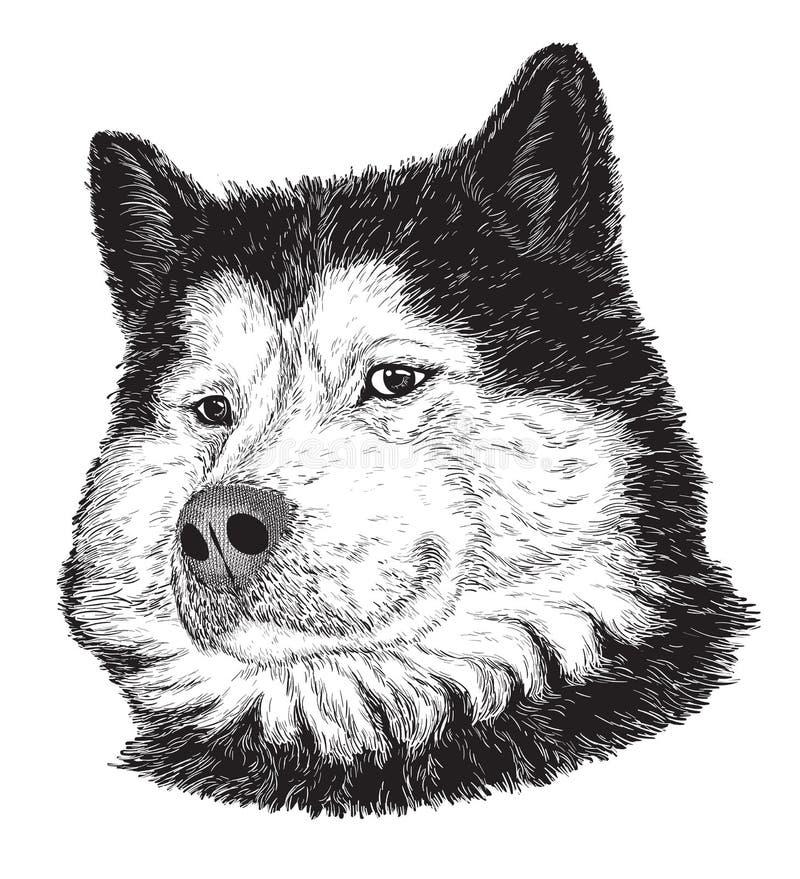 Psi portret (czarny i biały) ilustracji