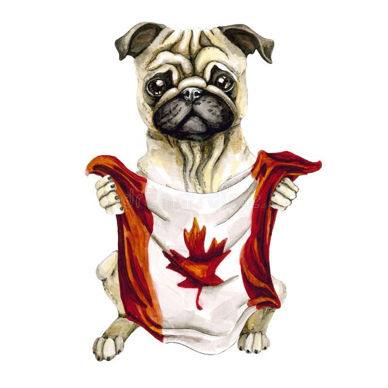Psi trakenu mops trzyma Kanada flagę toronto pojedynczy białe tło polityka szczeniak ilustracja wektor