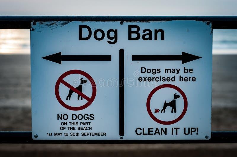 Psi zakazu znak zdjęcia royalty free