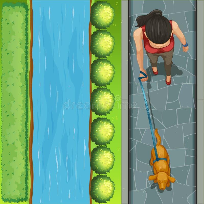 Download Psia chodząca kobieta ilustracja wektor. Ilustracja złożonej z strajki - 57657336