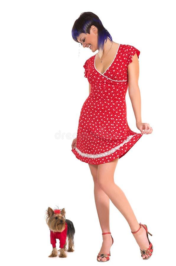 psia dziewczyno, obraz stock
