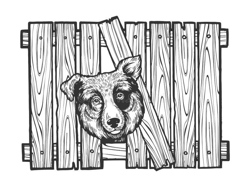 Psia głowa wtykał w płotowym nakreślenia rytownictwa wektorze ilustracja wektor