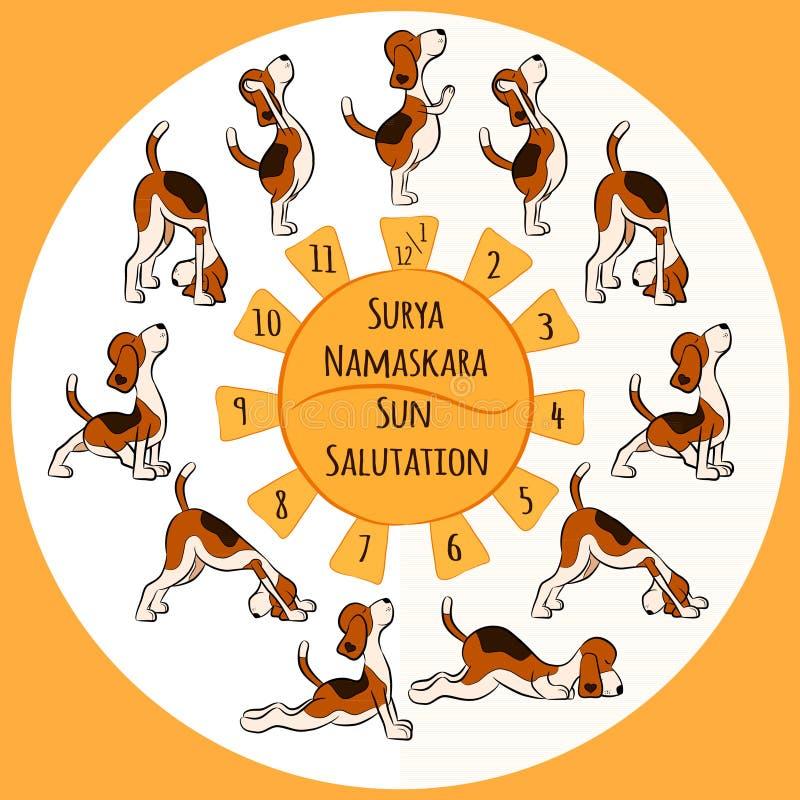 Psia robi joga pozycja Surya Namaskara ilustracji