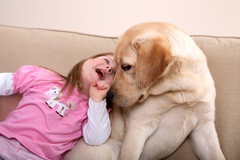 psia terapia obrazy royalty free