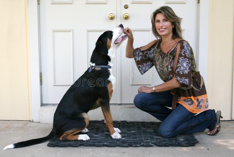 psia wspaniała halna szwajcarska kobieta obraz royalty free