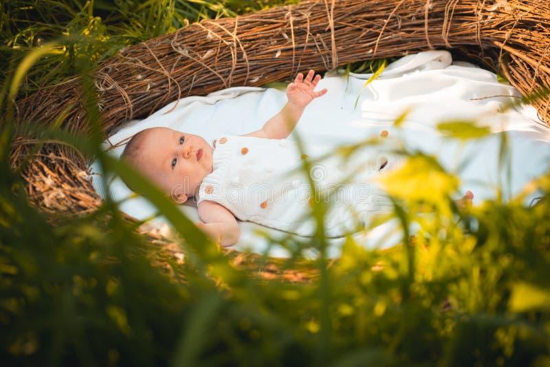Psicologia da família Psicologia infantil do developmentl Bebê recém-nascido na ucha Cuidado pediatra para o bebê recém-nascido C imagens de stock royalty free