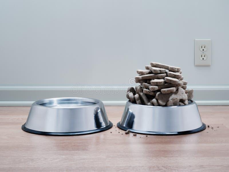Psie herbatniki, wysokie dla pustych zwierząt domowych fotografia stock