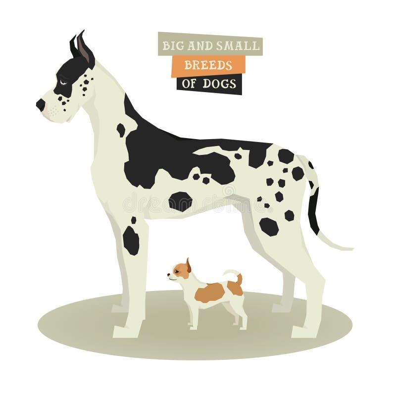 Psiego inkasowego Great Dane Ð ¡ hihuahua Duzi i Mali trakeny pies royalty ilustracja