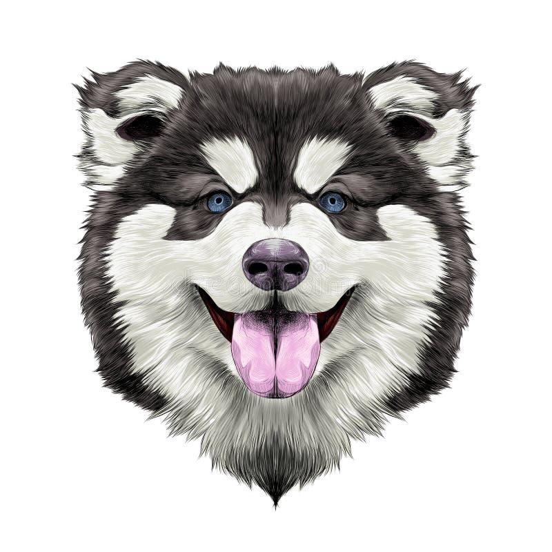 Psiej głowy symetrii nakreślenia wektorowe grafika royalty ilustracja