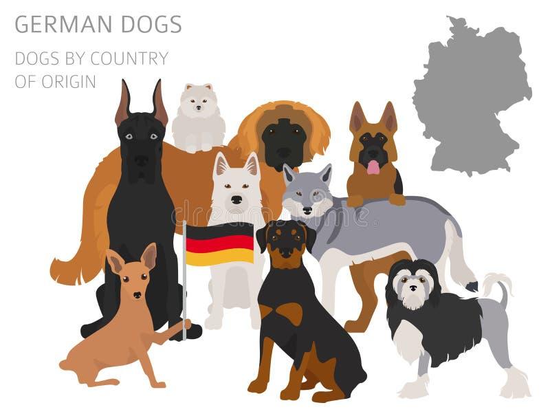 Psy krajem pochodzenia Niemiec psa trakeny Infographic templa ilustracja wektor