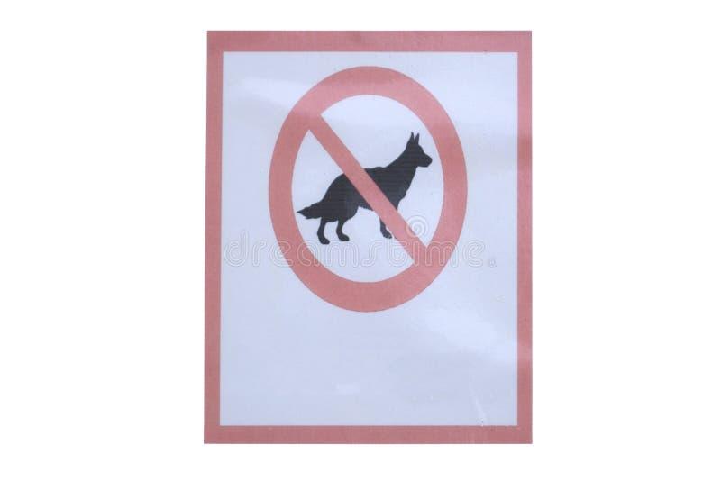 Psy zabraniają znaka Hiszpańszczyzny podpisują, żadny psy pozwolić zdjęcie royalty free