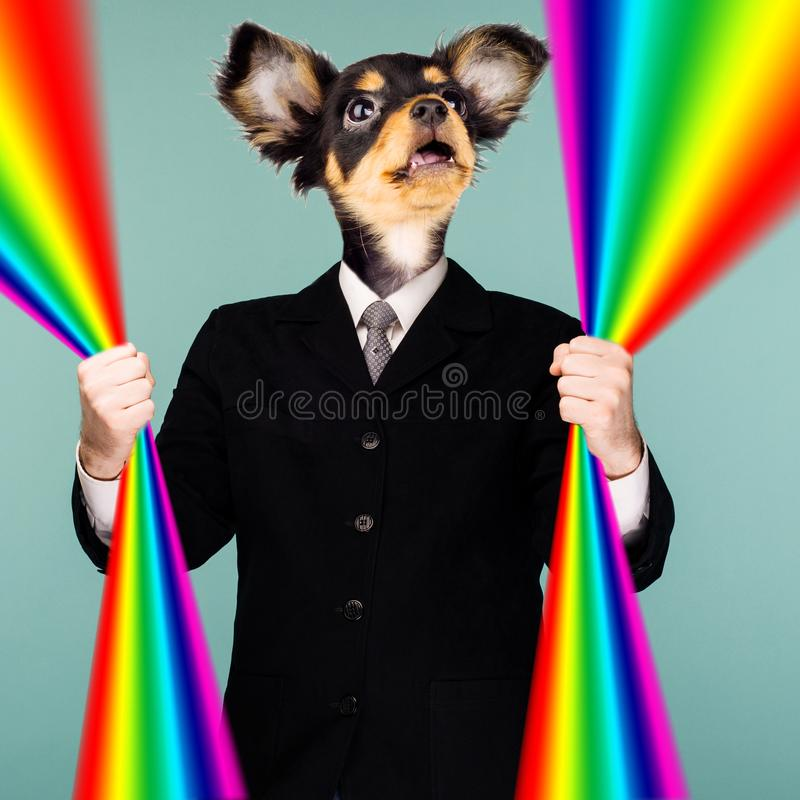 Psychedelic collage combining a man in a suit and a dog`s head. The character holds a rainbow in his hands and looks up. The mout royalty free stock image