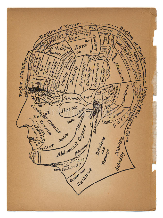 Free Psychology Or Medical Illustration Of Male Head Royalty Free Stock Photography - 17616257