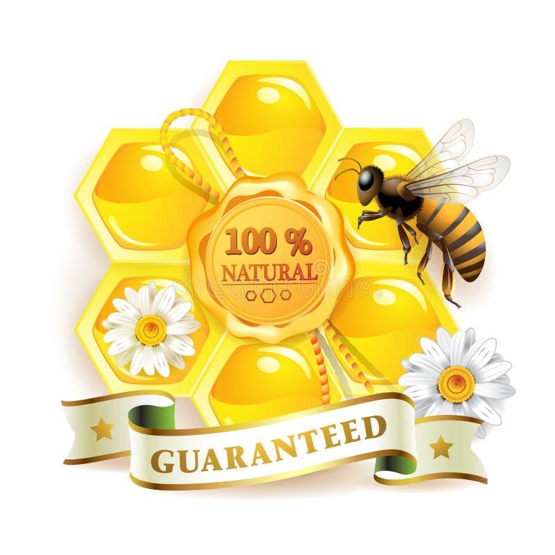 pszczół honeycombs ilustracja wektor