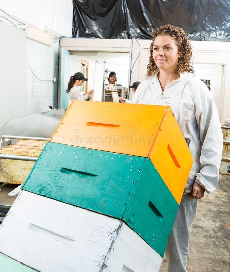 Pszczelarki dosunięcia tramwaj Brogujący Honeycomb fotografia royalty free