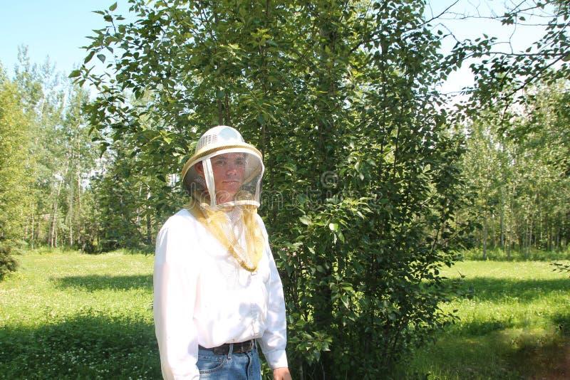 Pszczelarki pozycja koniczyny polem zdjęcie royalty free