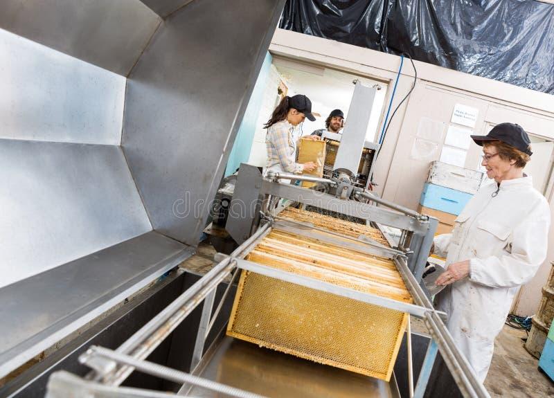 Pszczelarki Wydobuje miód Od maszyny zdjęcia stock