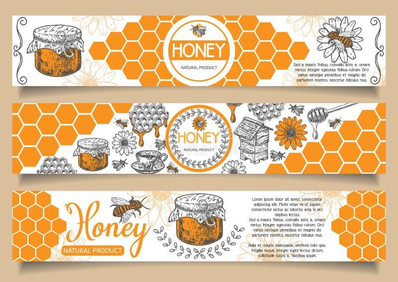 Pszczoła sztandaru naturalna miodowa wektorowa ręka rysujący horyzontalny set ilustracja wektor