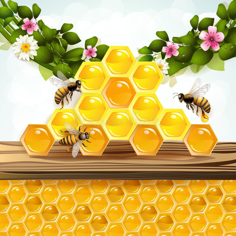 Pszczoły i honeycombs ilustracji
