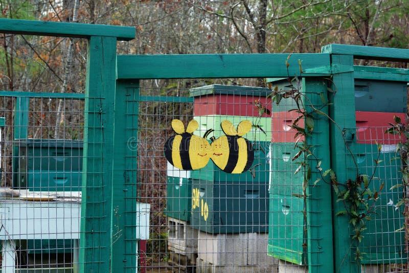 ` pszczoły kochanków ` pasieki zapasu fotografia ZDS obraz stock