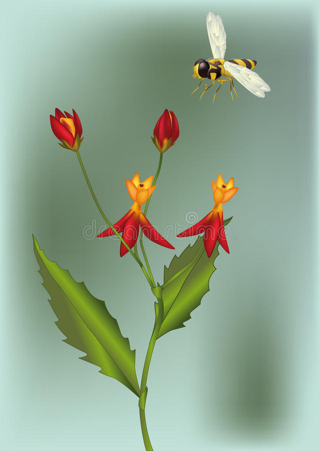 pszczoły kwiatu czerwień ilustracja wektor