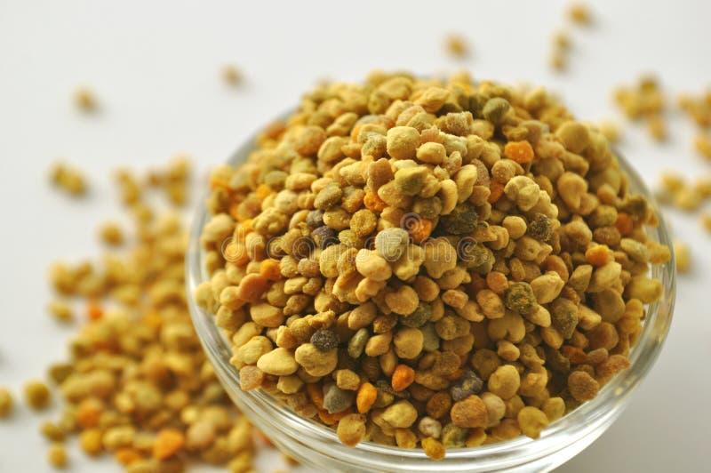 Pszczoły Pollen granule w szklanym pucharze obraz stock