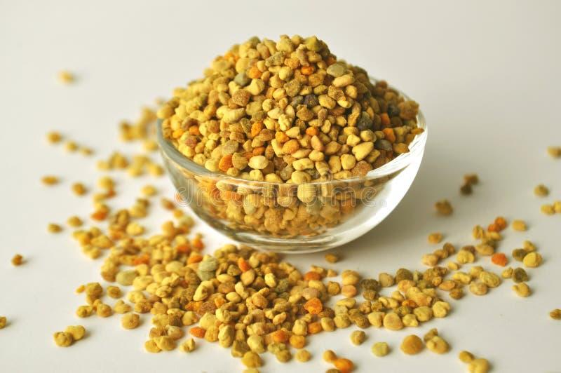 Pszczoły Pollen granule w szklanym pucharze zdjęcia stock