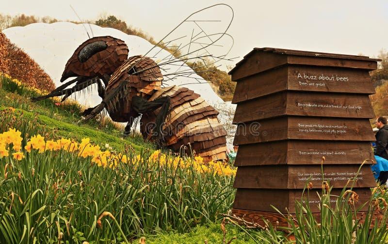 Pszczoły rzeźba przy Eden projektem, Cornwall obrazy stock