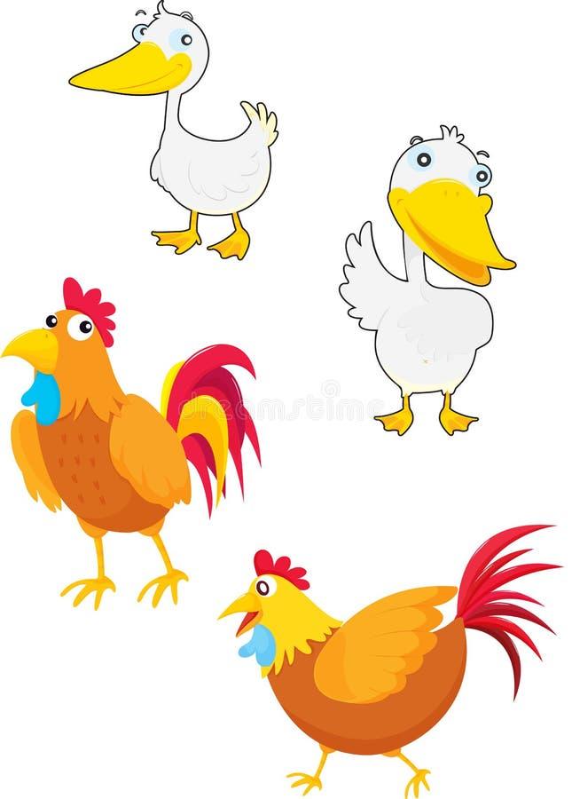 ptactwa ilustracji