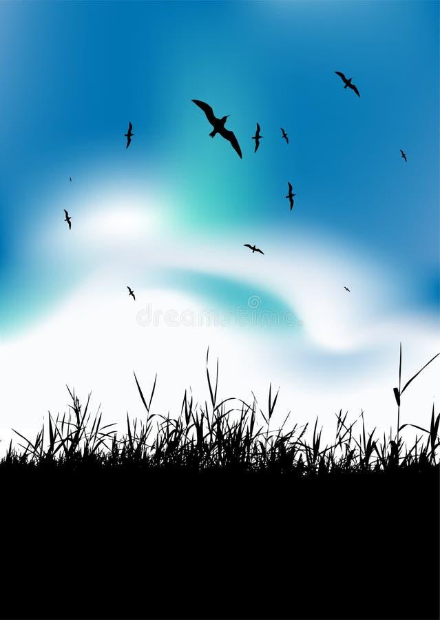 ptaków czarny łąkowy sylwetki nieba lato ilustracji