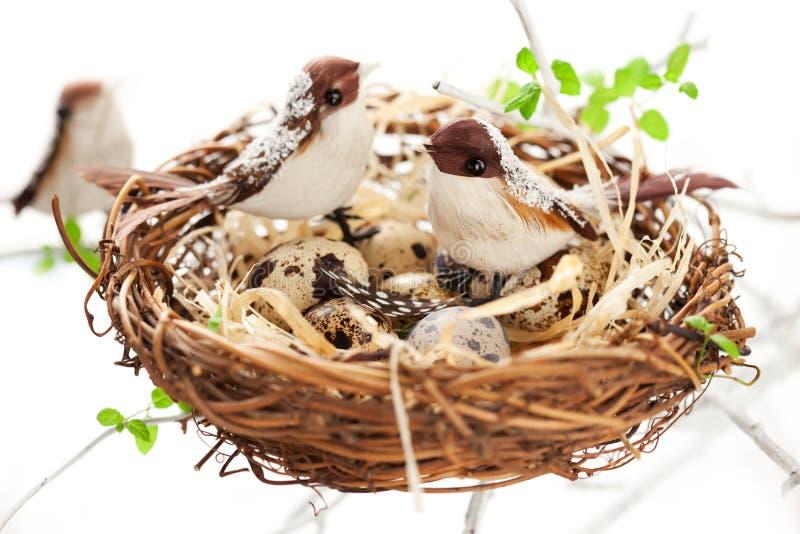 ptaków Easter jajek gniazdeczko zdjęcie stock