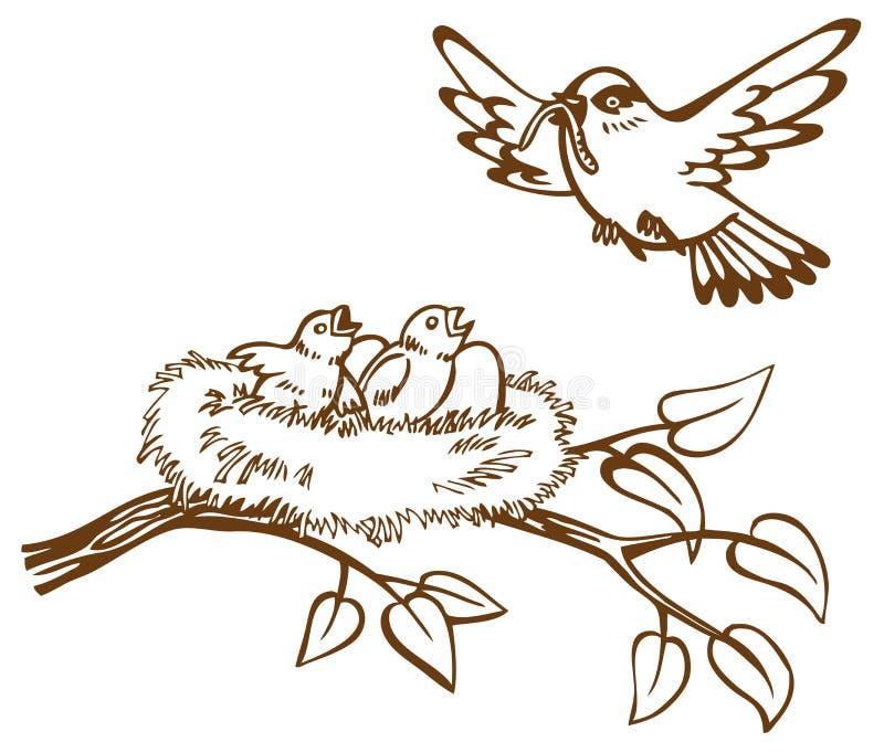 Ptaków kurczątka i gniazdeczko royalty ilustracja